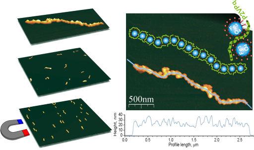 Nanowires. Magnetic