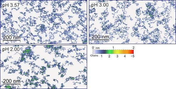 Single Molecule Adsorption
